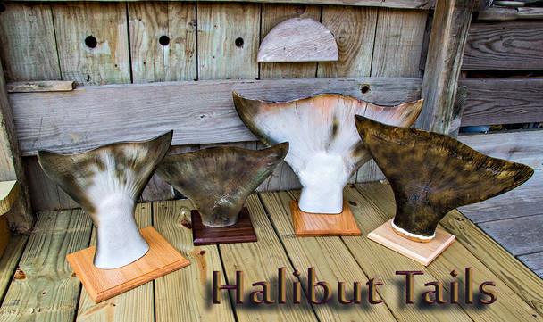 Halibut tails
