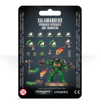 48-59 SMP Salamanders Upgrades & Transfers