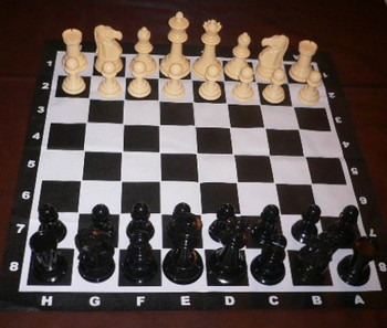 206mm Garden Chess Set & Mat