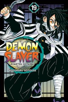 Demon Slayer Vol 19