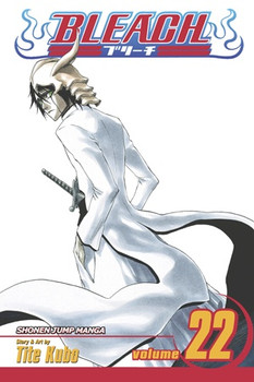 Bleach, Vol. 22