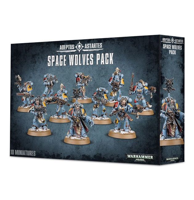 53-06 Space Wolves Grey Hunters 2020