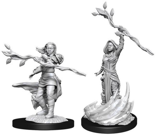 Human Druid Female W14