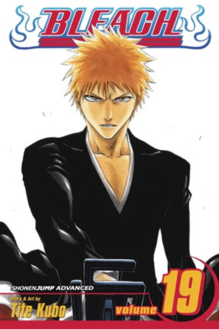 Bleach, Vol. 19
