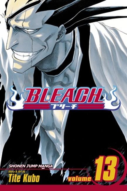 Bleach, Vol. 13