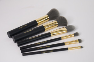 Pro Brush Essentials Kit