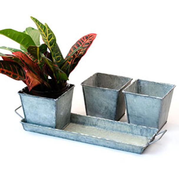Vintage Metal Square 3 Pot Herb Tin Container with Tray