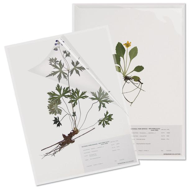 Herbarium Paper