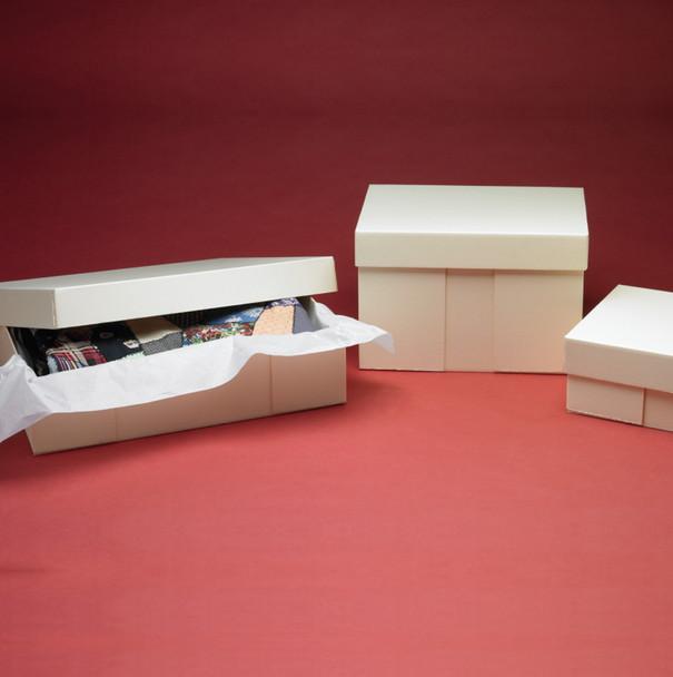 SafeCare® Hollinger Bully Boxes