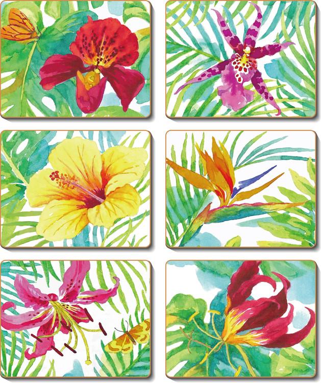 Tropicana Coasters
