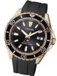 Citizen Eco-Drive Promaster 200 Meter Scuba Diver Watch with Dive Strap #BN0193-17E