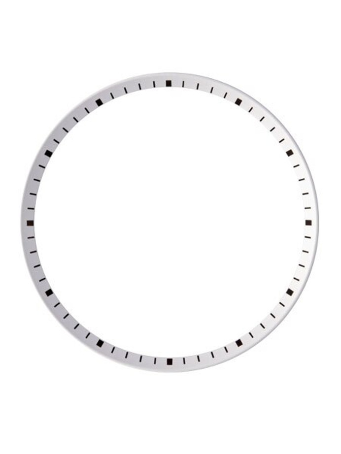 White Chapter Ring for Seiko SKX007, SKX009, SKX011 Watches #R09
