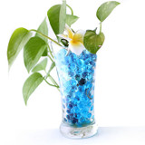 Water Beads for Plants