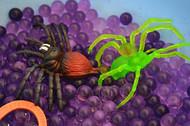Creepy Crawly Water Beads