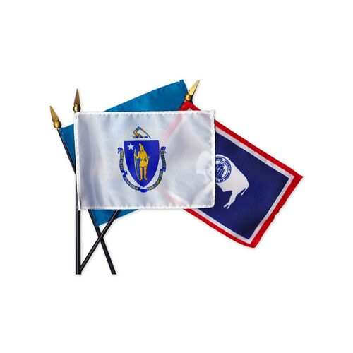 Mounted State Flags