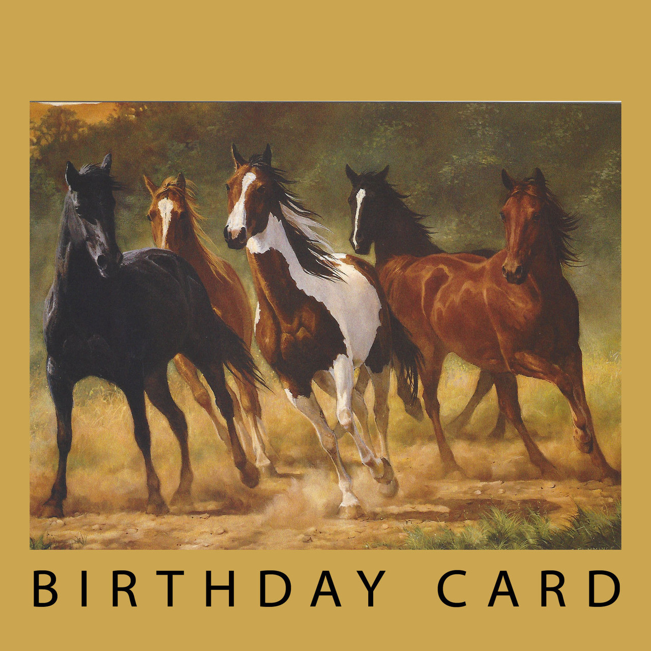 Birthdays Are For Horsin Around Birthday Card By Leanin Tree