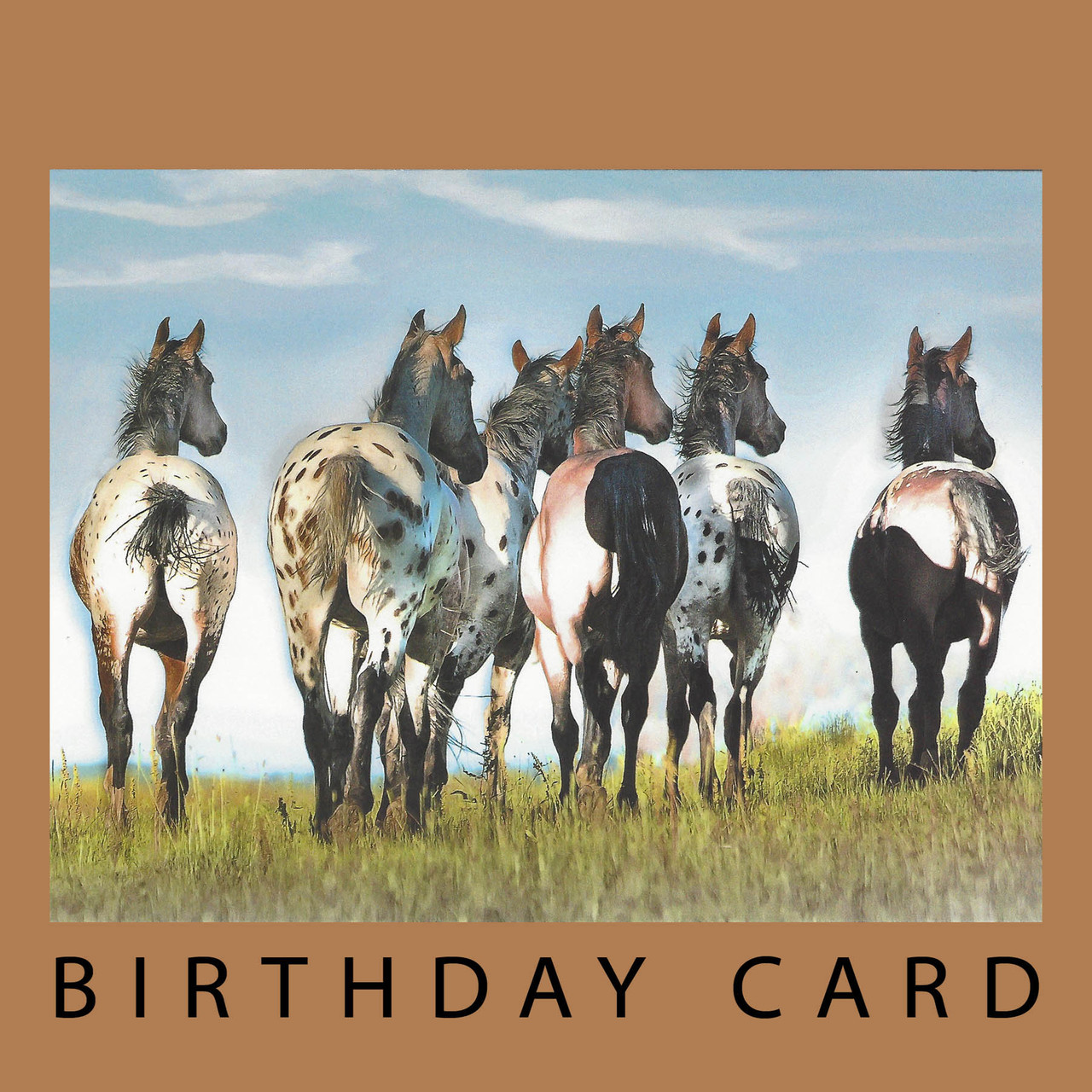 Another Year Behind You Birthday Card By Leanin Tree