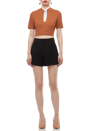 HIGH NECK WITH KEY HOLE FRONT CROP TOP BAN2004-0128-BR