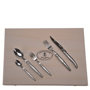 Jean Dubost 20pc Stainless Steel Flatware Set in Clasp Box