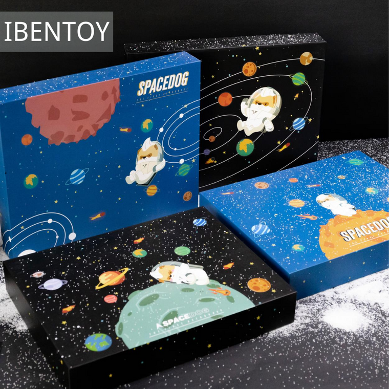 Space Puppy Diary Box