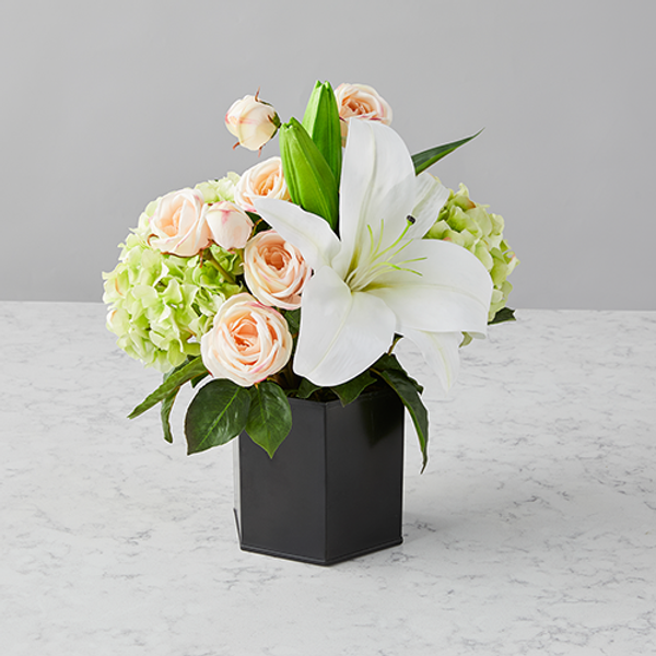 Replace the Winter Blues with Blooms!