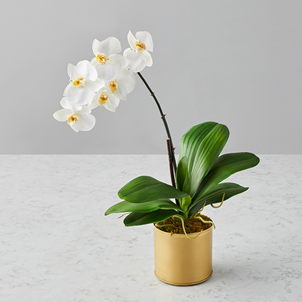Faux Flowers to Brighten Your Work from Home Space