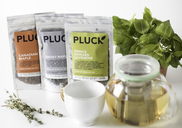 Brand Spotlight: Pluck Tea