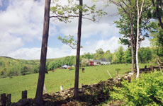 visitfarm-view.jpg