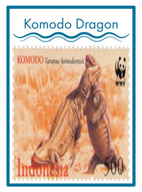 KOMODO DRAGON COFFEE