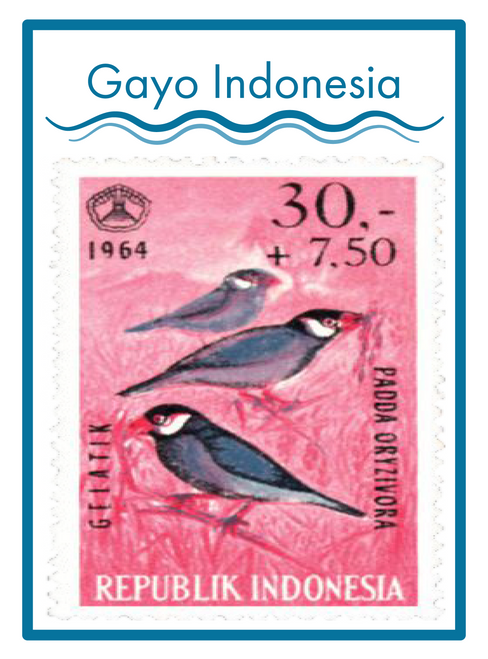 GAYO INDONESIA COFFEE