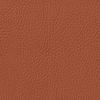 Classic SCL-035 Saffron