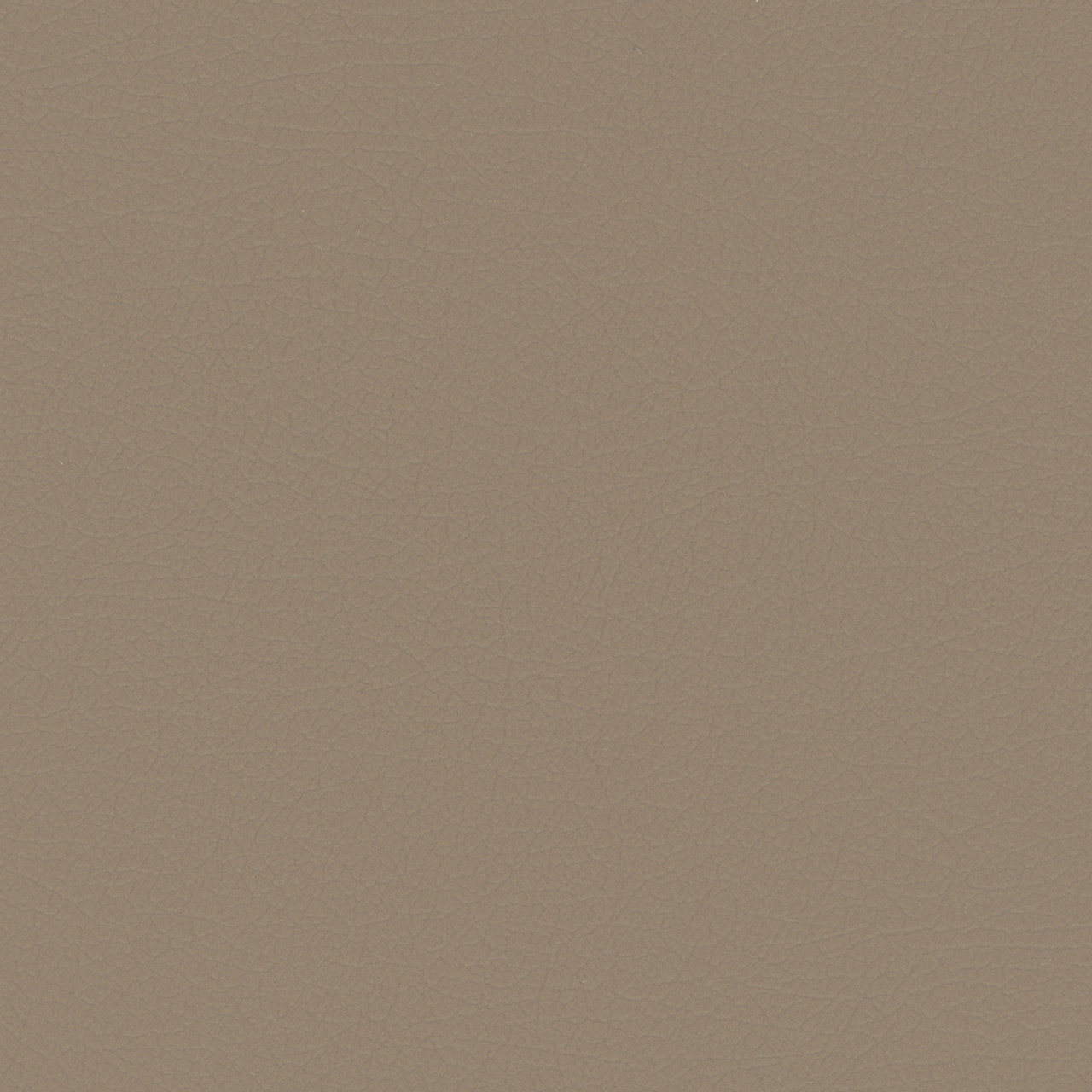 Nuance NUA-2463 Medium Neutral