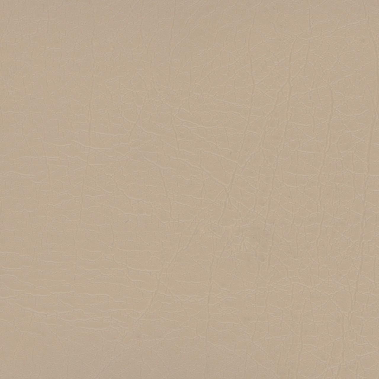 Aries ARI-1604 Sand Dollar