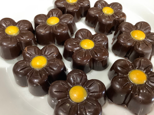 Dark Chocolate Daisies w Limoncello and EVOO Caramel-6 Count