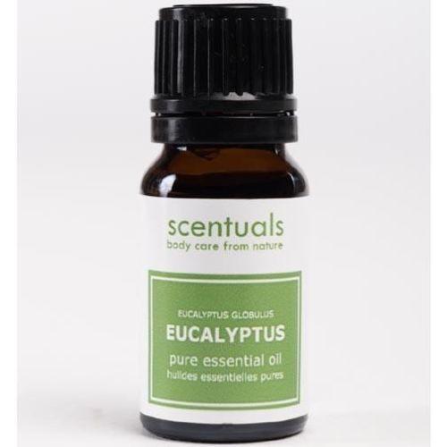 Scentuals 100% Pure Essential Oil 10 ml - Eucalyptus