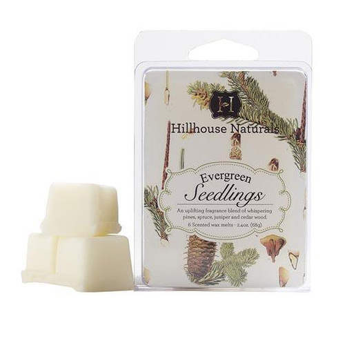 Hillhouse Naturals Wax Melt 2.4 Oz. - Evergreen Seedlings