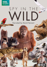 Spy in the Wild (2017) (Normal) [DVD] [DVD / Normal]