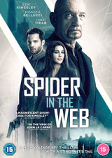 Spider in the Web (2019) (Normal) [DVD] [DVD / Normal]