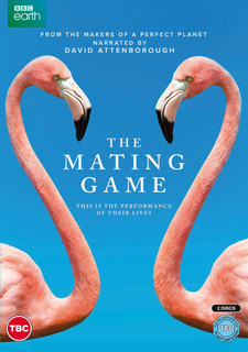 The Mating Game (2021) (Normal) [DVD] [DVD / Normal]