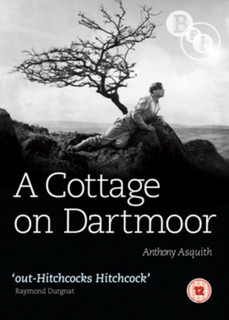 A Cottage On Dartmoor (1929) (Normal) [DVD] [DVD / Normal]