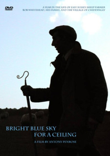 Bright Blue Sky for a Ceiling (Normal) [DVD]