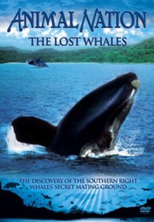 Animal Nation: The Lost Whales (Normal) [DVD]