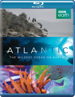 Atlantic - The Wildest Ocean On Earth (2015) (Normal) [Blu-ray] [Blu-ray / Normal]