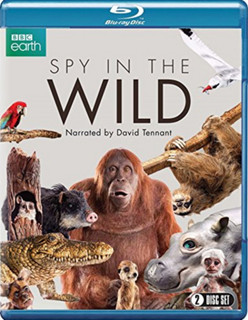 Spy in the Wild (2017) (Normal) [Blu-ray] [Blu-ray / Normal]