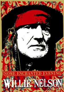 Willie Nelson: Some Enchanted Evening (Normal) [DVD]