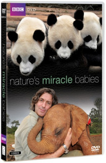 Nature's Miracle Babies (Normal) [DVD]
