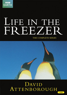 David Attenborough: Life in the Freezer - The Complete Series (1994) (Normal) [DVD]