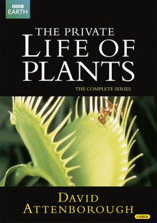 David Attenborough: The Private Life of Plants - The Complete... (1995) (Normal) [DVD] [DVD / Normal]
