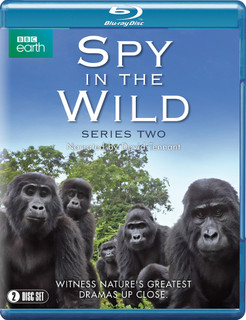 Spy in the Wild: Series Two (Normal) [Blu-ray]