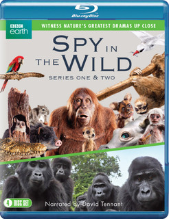 Spy in the Wild: Series One & Two (2020) (Box Set) [Blu-ray]